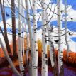 Aspens, Blackbirds...